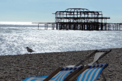 Deckchair by West Pier